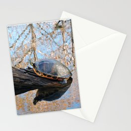 Turtle at the Slough Preserve Stationery Cards
