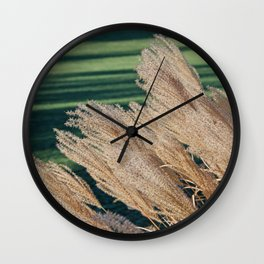 MISCANTHUS SINENSIS YAKU JIMA SEEDHEADS AND GREEN LAWN SHADOWS  Wall Clock
