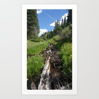 Summer in the Rockies- Stream Heading Down the Mountain Art Print
