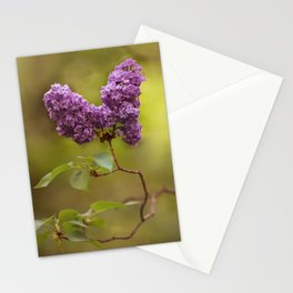 Blooming lilacs at sunset Stationery Cards