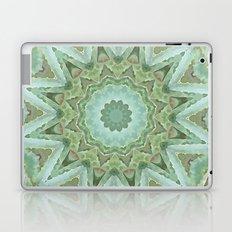 Kaleidoscope of Cacti Laptop & iPad Skin