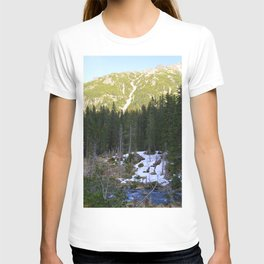 The Snow is Melting T-shirt