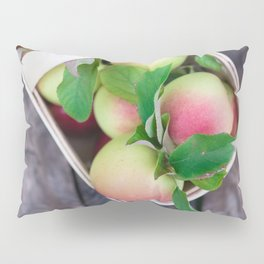 Apples for Pie Pillow Sham