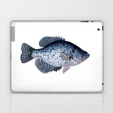 black crappie Laptop & iPad Skin