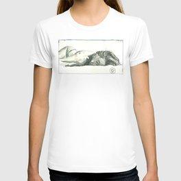Laia Sleeps T-shirt