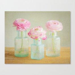 Pinkies Canvas Print