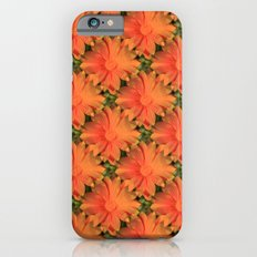 Orange Daisy iPhone 6s Slim Case