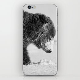 Alaskan Grizzly Bear in Snow, B & W - I iPhone Skin