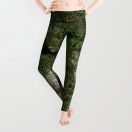 moss Leggings
