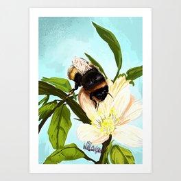 Bee on flower 4 Art Print