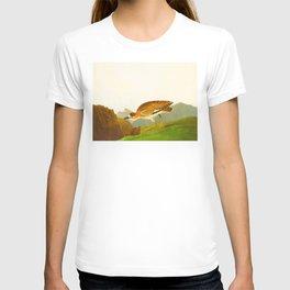 Rocky Mountain Plover Bird T-shirt