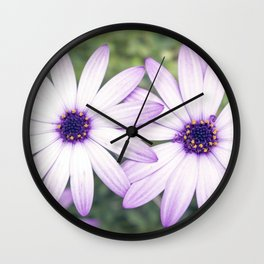 Rain Dasiy Double Wall Clock