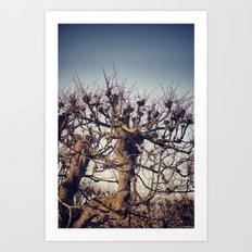 :: lonely tree :: Art Print