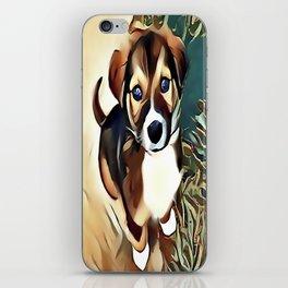 A Saint Bernard Puppy iPhone Skin