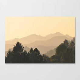 NAPA VALLEY Canvas Print