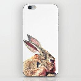 Rabbit Portrait iPhone Skin