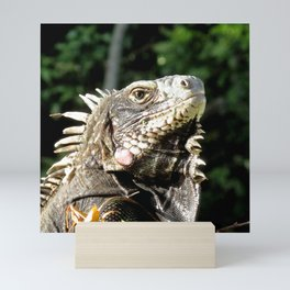 Watercolor Reptile Green Iguana 02, Is This My Good Side? Mini Art Print