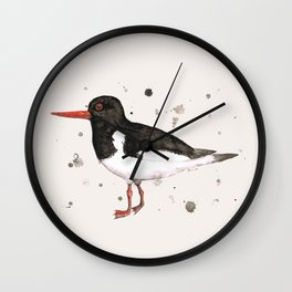 Oyster catcher Wall Clock