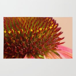 Cone flower colors Rug