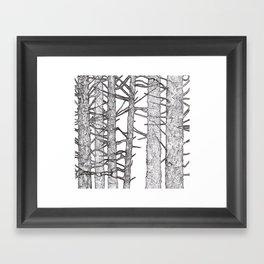 Black & White Trees Framed Art Print