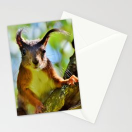 A Cute Squirrel Looking at YOU Stationery Cards