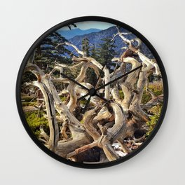 Twisted Branches Wall Clock