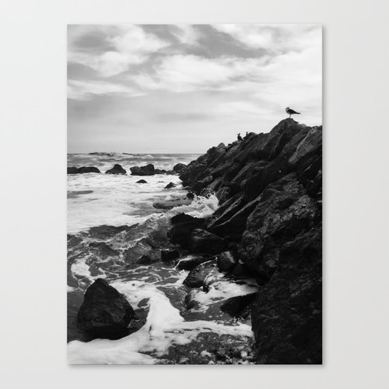 Dark beach Canvas Print