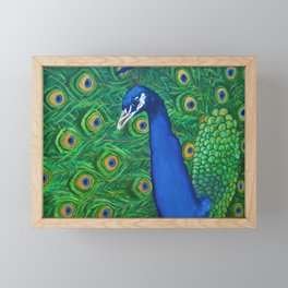 Peacock Framed Mini Art Print
