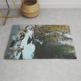 Brandywine Falls Creak Rug
