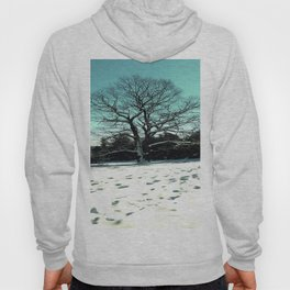 Wise Winter Tree Hoody