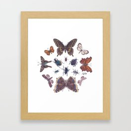 Mosaic of Bugs Framed Art Print