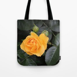 "A Rose Named ""Julia Child"" Tote Bag"
