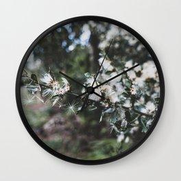 Florida White Flower Detail Wall Clock