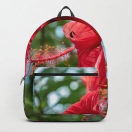 Wildflower Stamen // Beautiful Red Flower in Full Bloom Close Up Macro Photograph Backpack