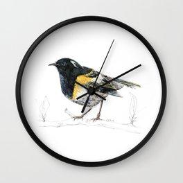 Hihi, New Zealand native Stitchbird Wall Clock