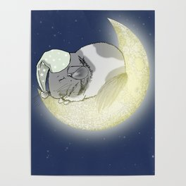 Good Night Little Pinto Poster