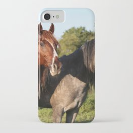 Two Horses Standing Grass Field On iPhone Case