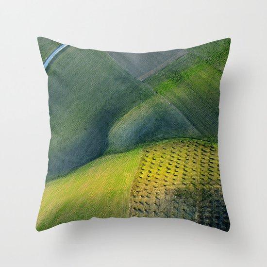 Geometries aerial at sunset Throw Pillow