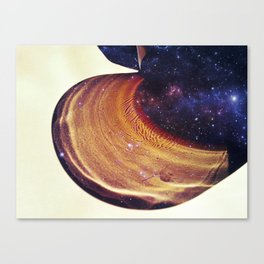 A glass of universe Canvas Print