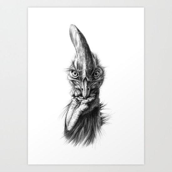 Cassowary  G2012-066 Art Print