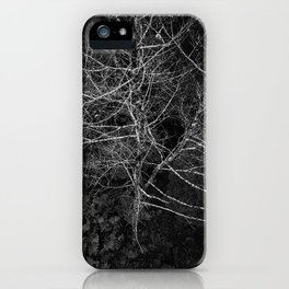 Tasmania Trees From Above iPhone Case