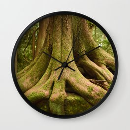 Old Growth Tree Roots Forest Woods Washington Northwest Boulder Geology Outdoors Landscape Wall Clock