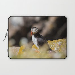 Puffin from Ireland (RR 284) Laptop Sleeve