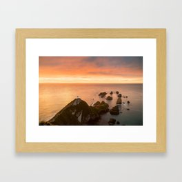 Nugget Point Framed Art Print