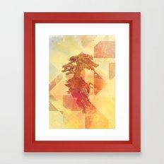 Bocuma 03 Framed Art Print