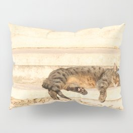 The sun shines on all cats equally Pillow Sham