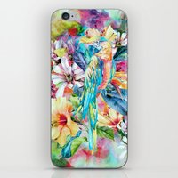 parrot iPhone & iPod Skins featuring PARROT by RIZA PEKER