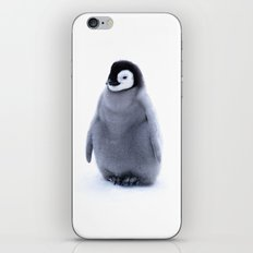 A little penguin  iPhone & iPod Skin
