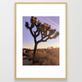 """Just Joshin"" Joshua Tree Framed Art Print"