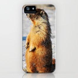 Marmot Belly iPhone Case